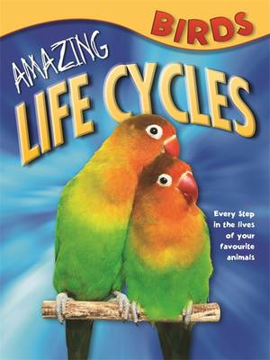 Amazing Life Cycles: Birds - Amazing Life Cycles No. 3 (Paperback)