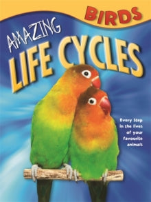 Life Cycles BIRDS