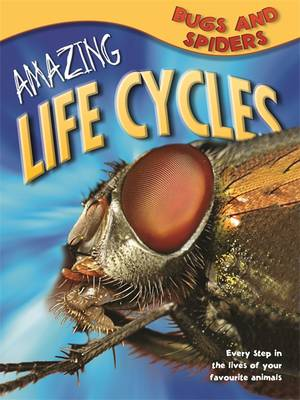 Amazing Life Cycles: Bugs and Spiders - Amazing Life Cycles (Paperback)