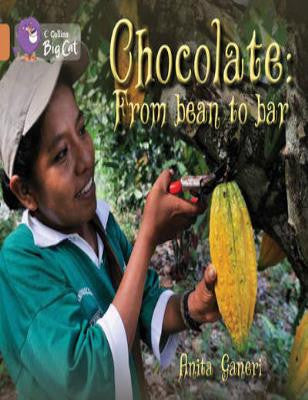 Chocolate : From Bean to Bar