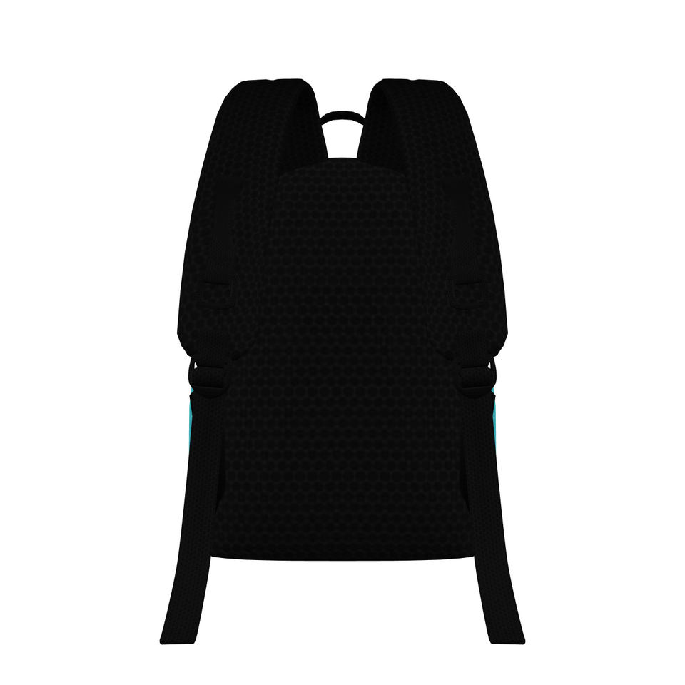 FYC Large Padded Backpack