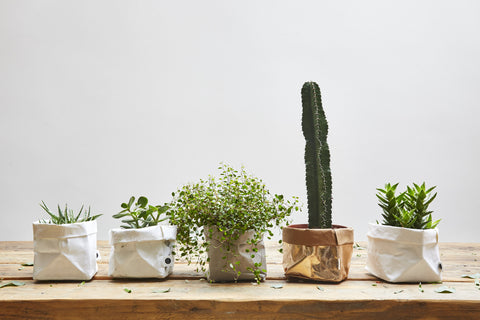 Washable Plant Bags