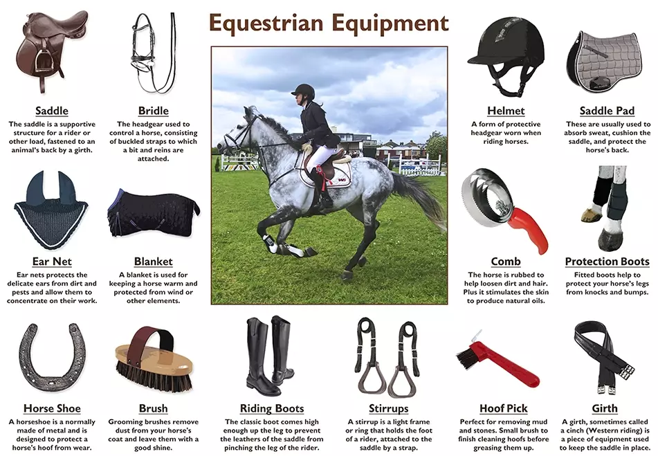 The riding equipment
