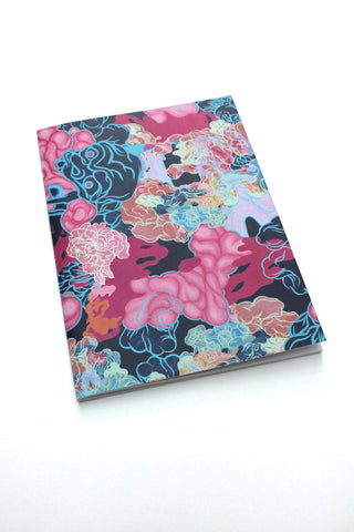 Louise Zhang Notebook