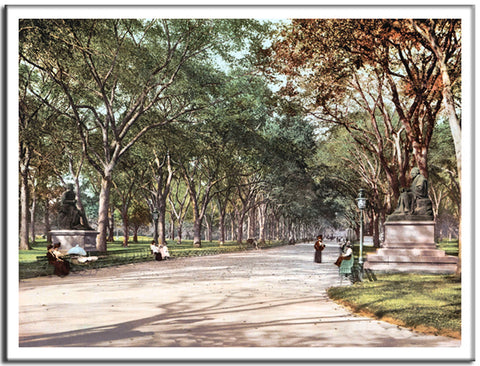 Lower End of Mall Central Park - US Streets Scene - Vintage re-print - 1901-Poster-Elysiumprints