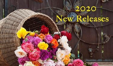 2019 New Releases