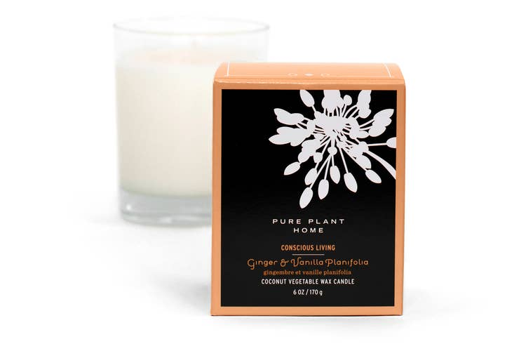 Ginger and Vanilla Coconut Wax Candle by Pure Plant Home