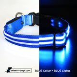 Rechargeable LED Collar - Pink/Blue/Red/Green