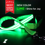 Rechargeable LED Leash - Lime/Pink/Blue/Red/Green+Black