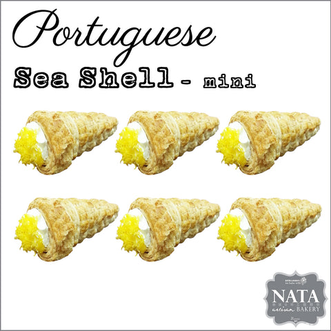 Portuguese Sea Shell Mini (6 pcs)