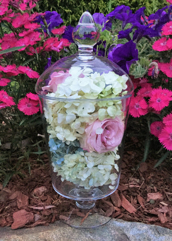 "E-TTAL Preserved Flowers ~ 11"" x 5"" Glass Apothecary Jar Display"