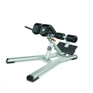 Precor Discovery Series Back Extension