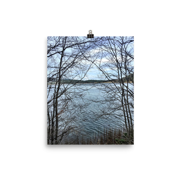Through Naked Branches Photo paper poster