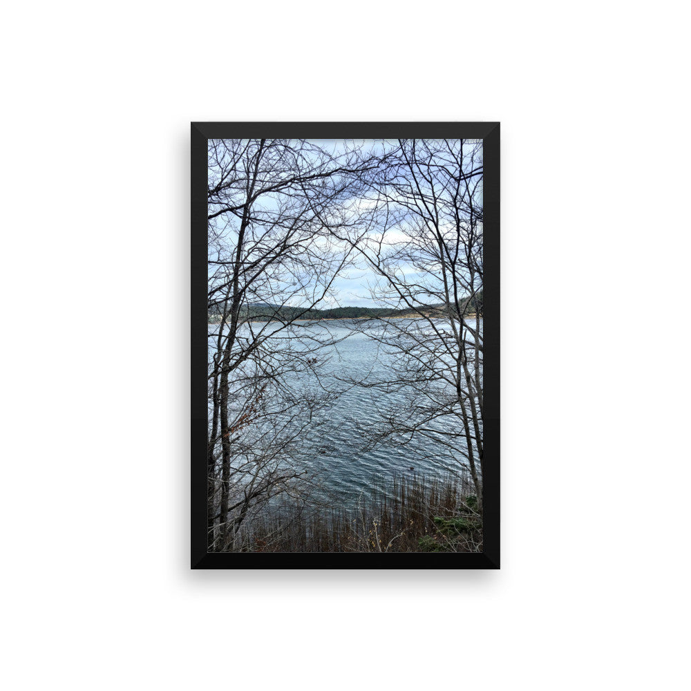 Through Naked Branches Framed Poster