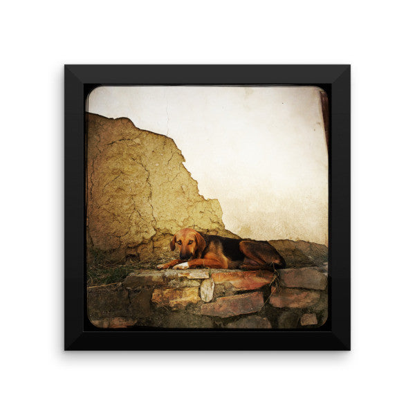 Innocence framed photo paper poster