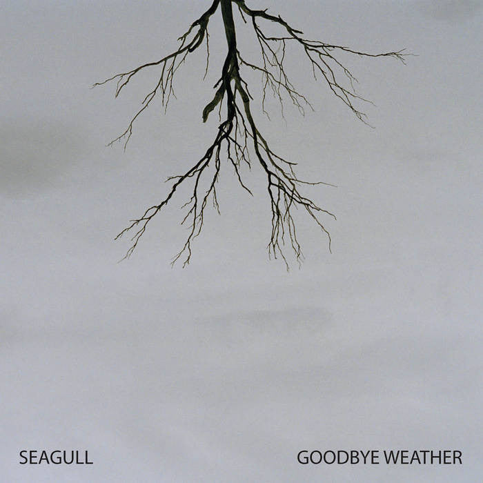 Seagull Goodbye Weather CD