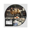 Wilco - Wilco (The Album) Picture Disc (Vinyl)