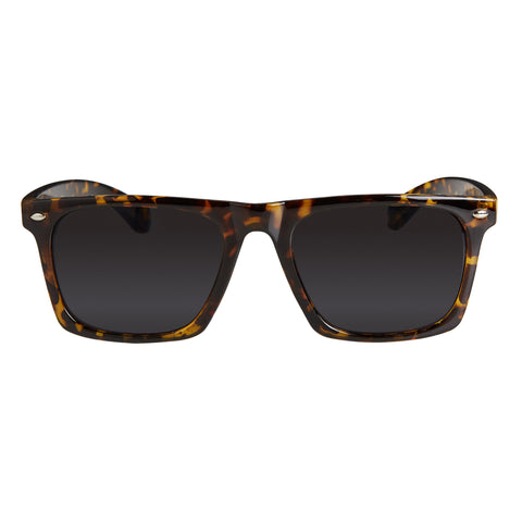 Cardinal Editions The Super Perpendicular Sunglasses in Classic Tortoiseshell