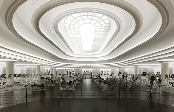 Witness the Vitness @ Equinox gym