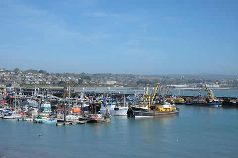Newlyn fishing fleet, Cornwall