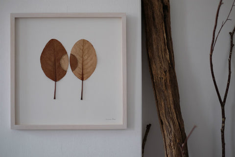 Susanna Bauer featured on No.56, Penzance, Cornwall