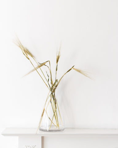 barley in glass vase