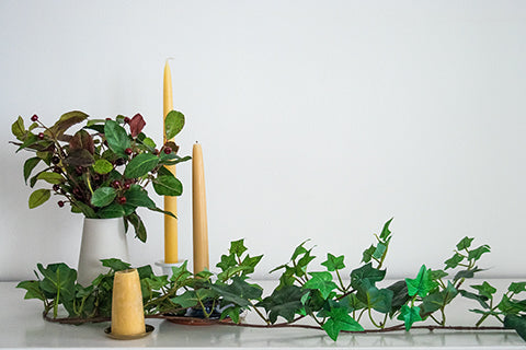 Ivy and beeswax candles