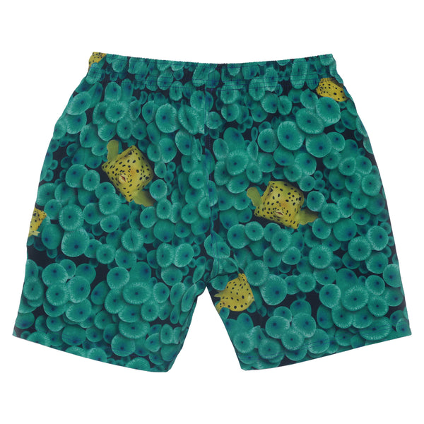 Men's Puffer Fish Anemone Swimshort - Houndsditch - 2