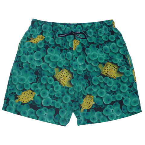 Men's Puffer Fish Anemone Swimshort - Houndsditch - 1