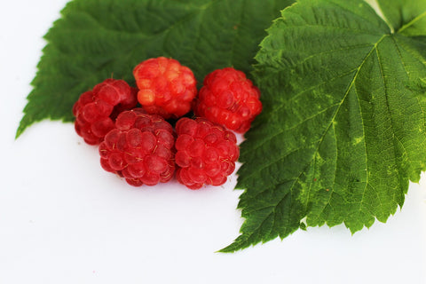 Raspberry Leaf is incredibly healthy