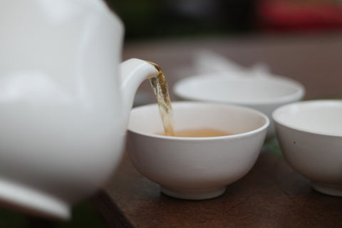 White Tea benefits your metabolism