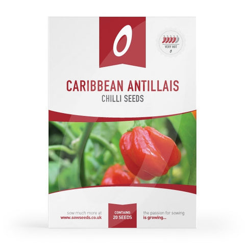 Caribbean Antillais Chilli Seeds (AGM)