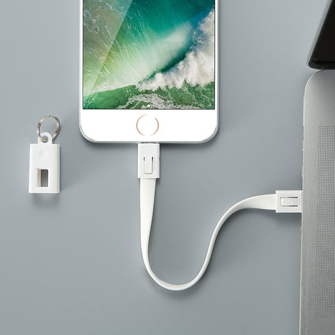 Image of Portable Key Design Mini USB Cable for AppleThegirlsoutfits