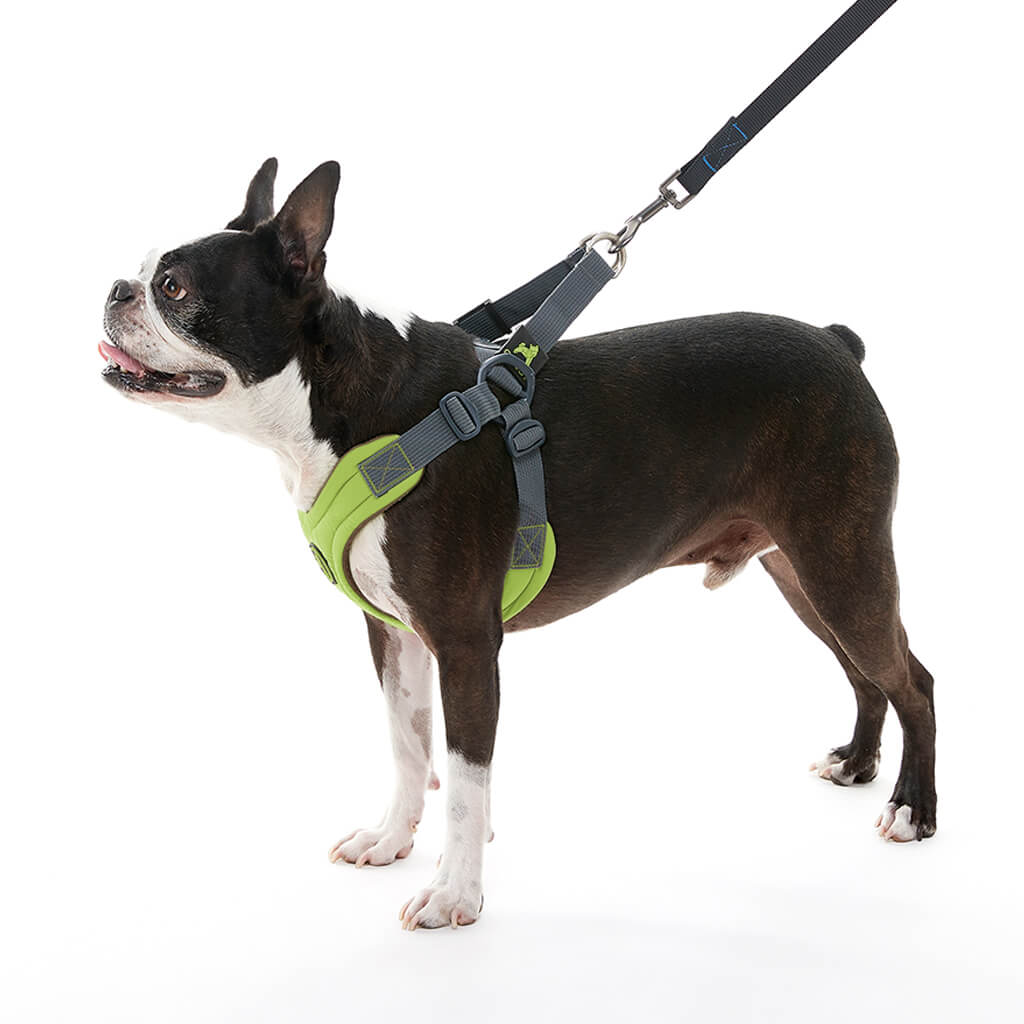 Escape Free® Memory Foam Harness