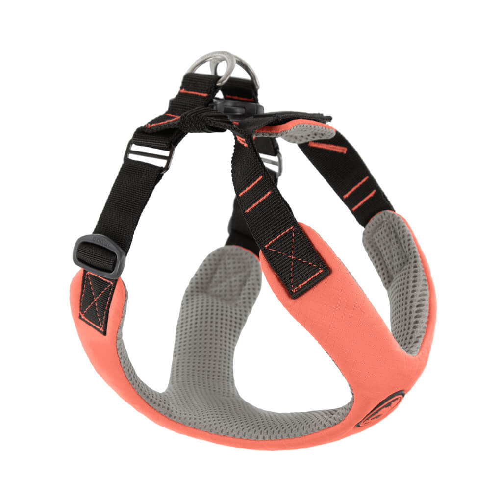 Convertible Z Harness