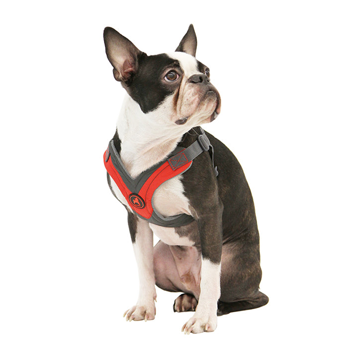 Trekking Harness