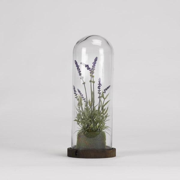 Lavender spray in glass dome with wood base