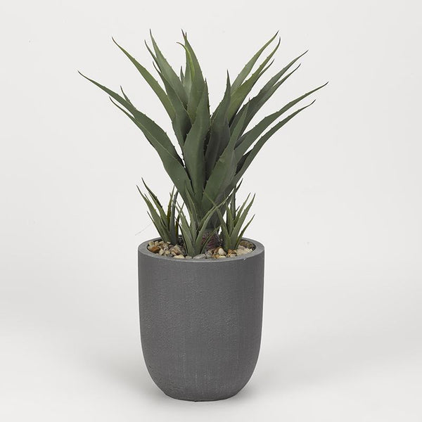 34″ Sisal plant in round grey resin planter