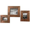 Ambrosia Photo Frames, S/3 (4733547249760)