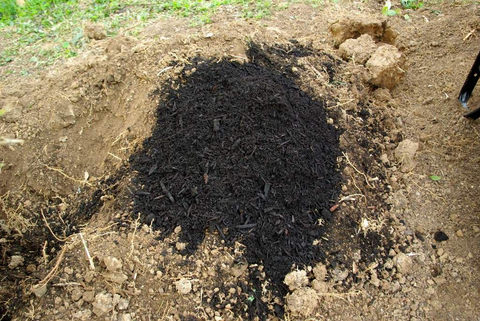 Layering in Compost for a Bountiful Harvest