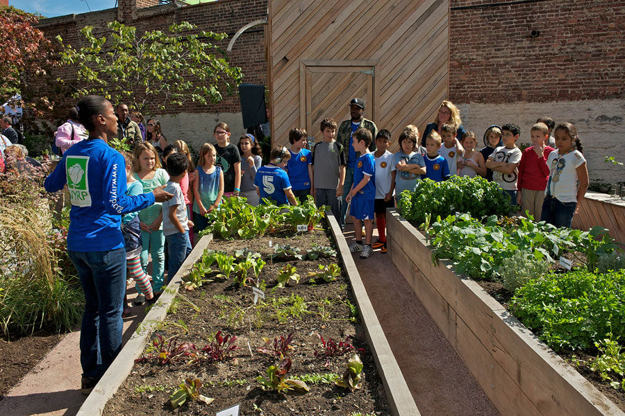 Educational activities in community gardens in New York City