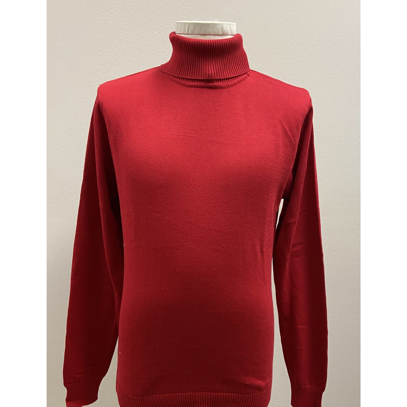 VARESSA TERRANO TURTLENECK SHIRT RED