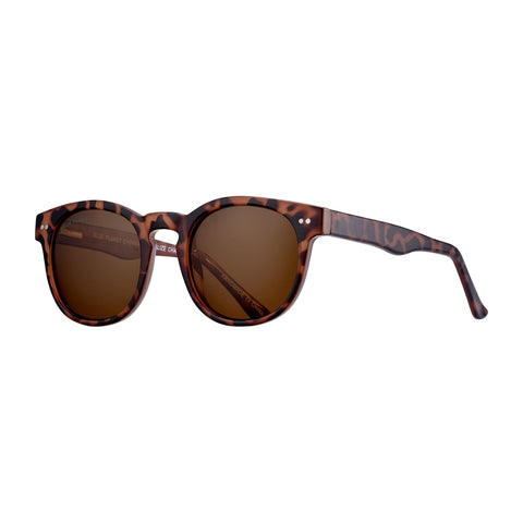 Blue Planet - Indie - Amber Tortoise/Brown Polarized