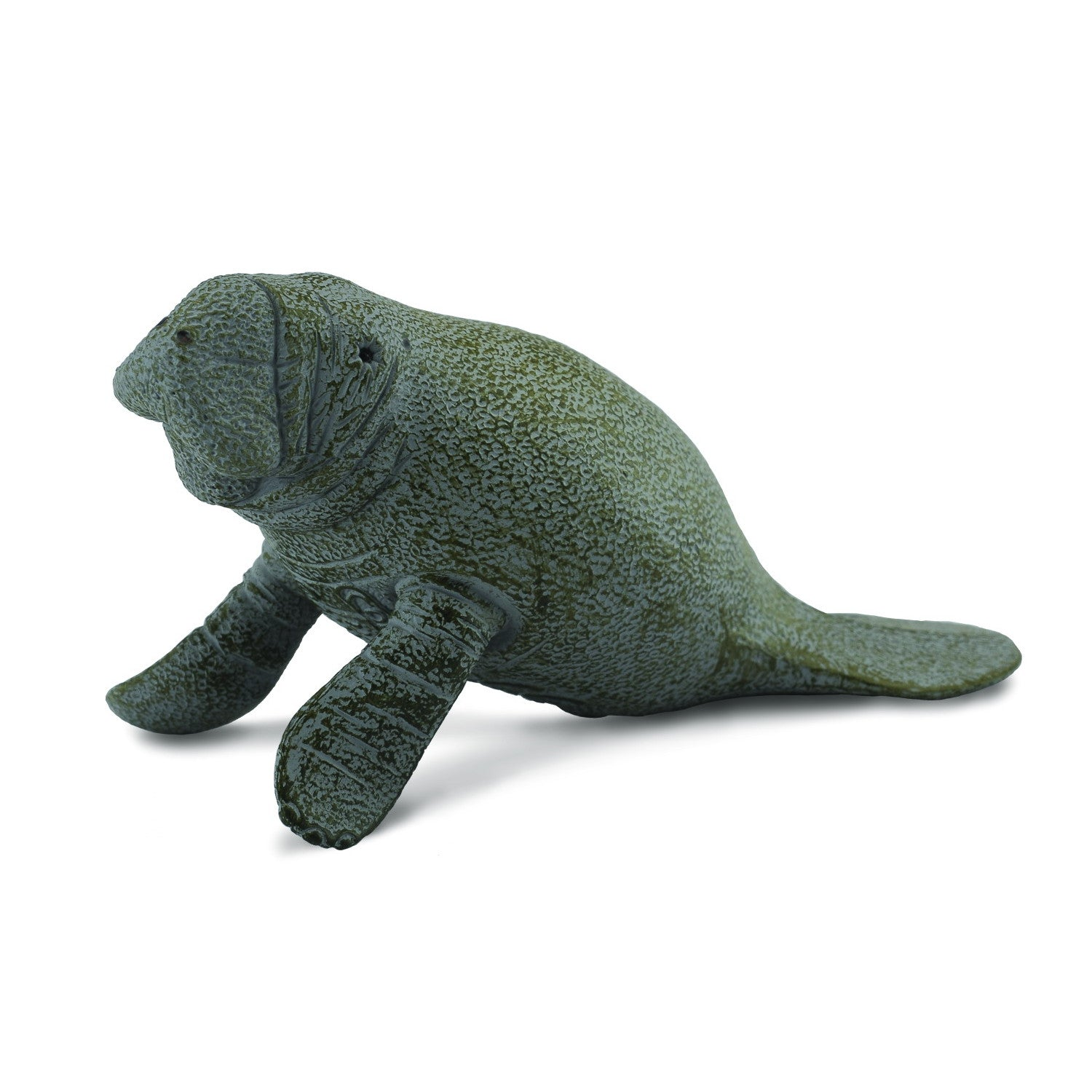 CollectA Manatee Calf Swimming Medium