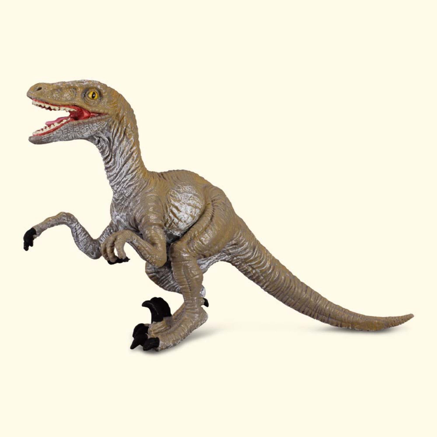CollectA Velociraptor
