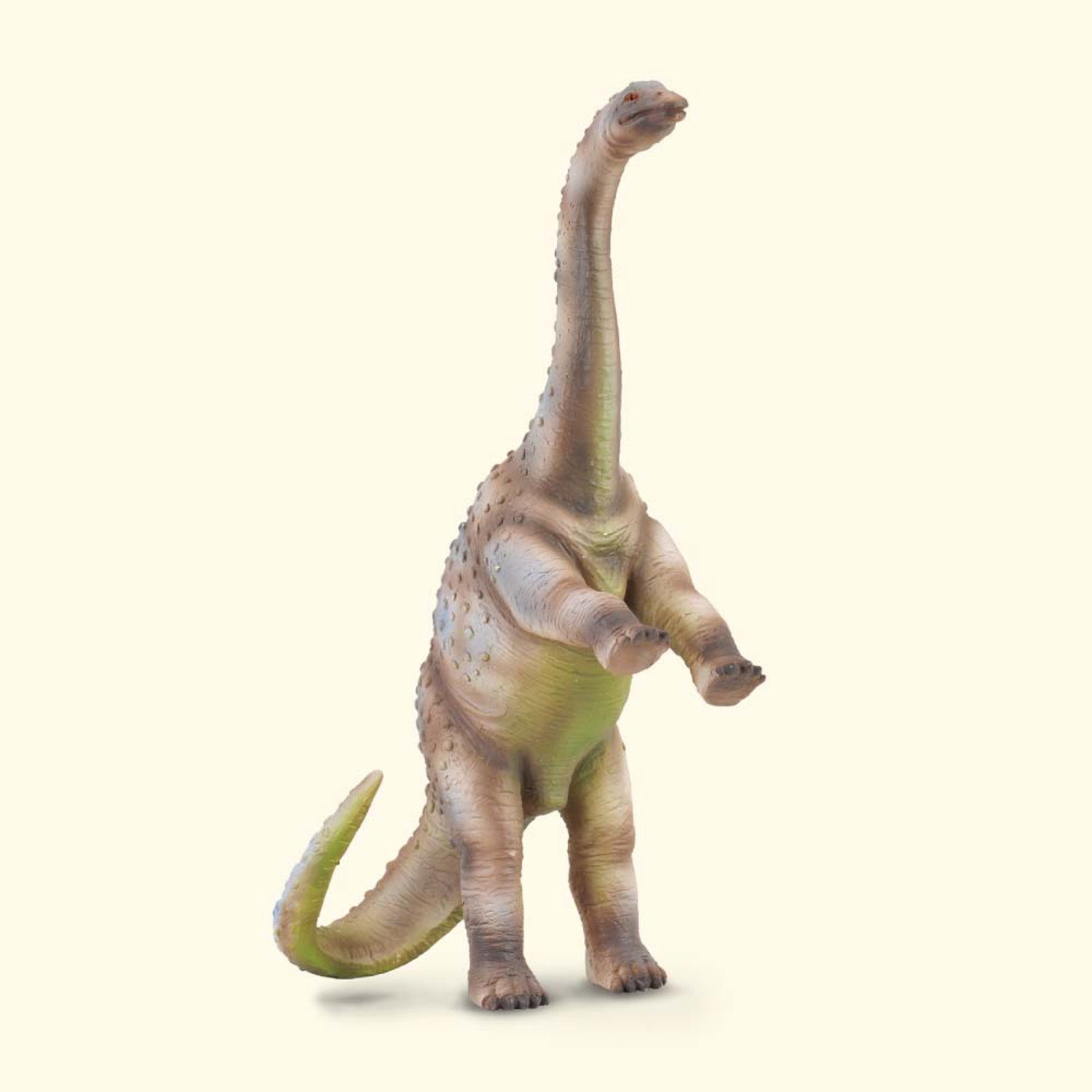 CollectA Rhoetosaurus Large