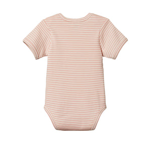 Nature Baby Cotton Bodysuit Short Sleeve - Lily Stripe