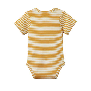 Nature Baby Cotton Bodysuit Short Sleeve - Honey Stripe