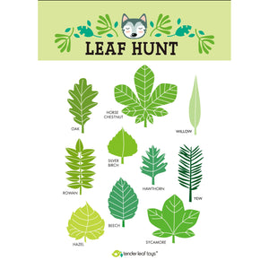 Tender Leaf Forest Trail Kit