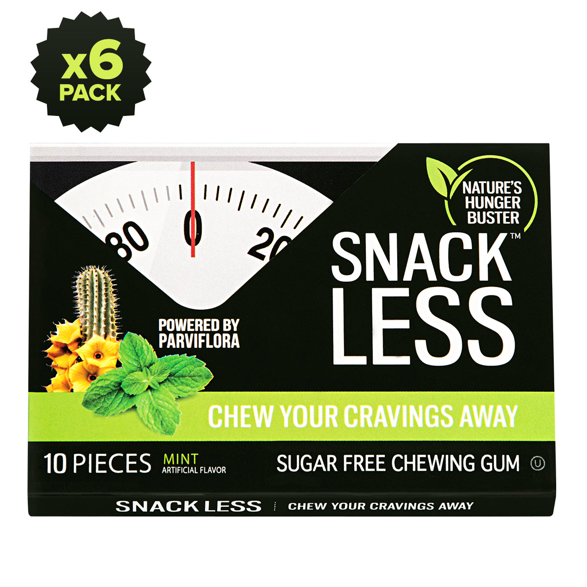 Chewing Gum, Mint <p>6 pack</p>